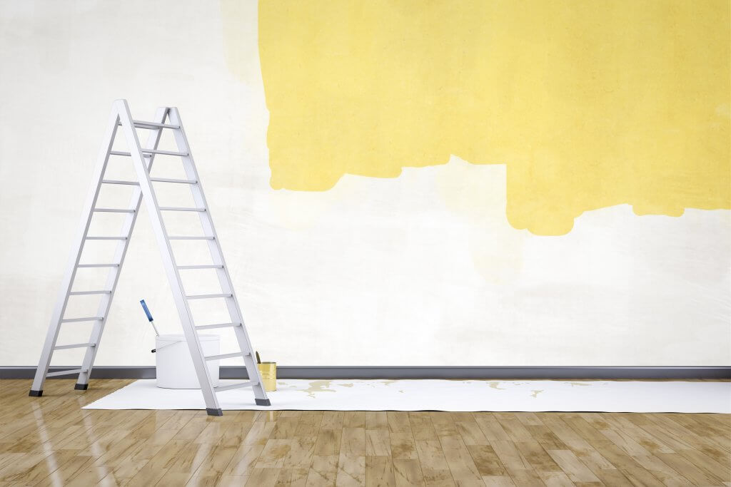 paint renovation makeover home