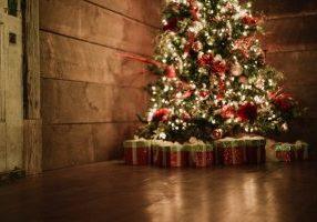 lightstock_494579_full_kira_kwonChristmas People Gift